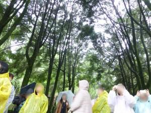 霧社事件記念公園