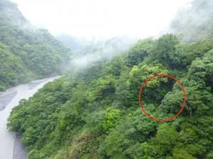 モナルダオ達が日本軍から逃れる為に切り落とした吊り橋の跡地
